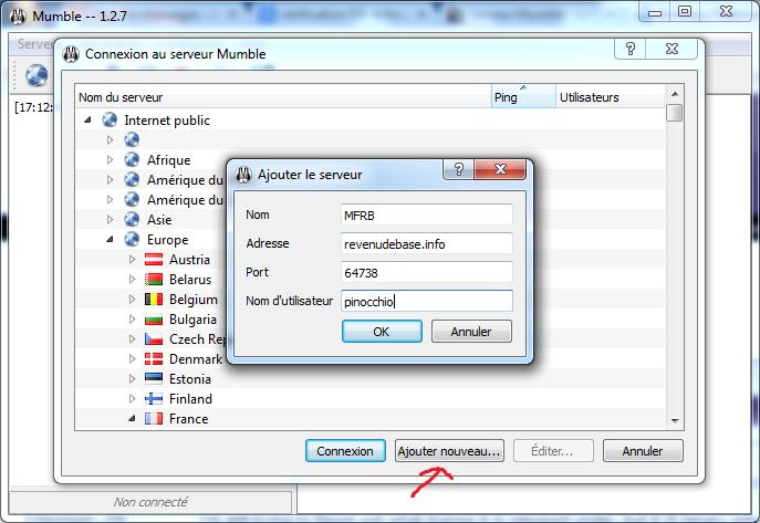 Ajouter le serveur mumble sur Windows